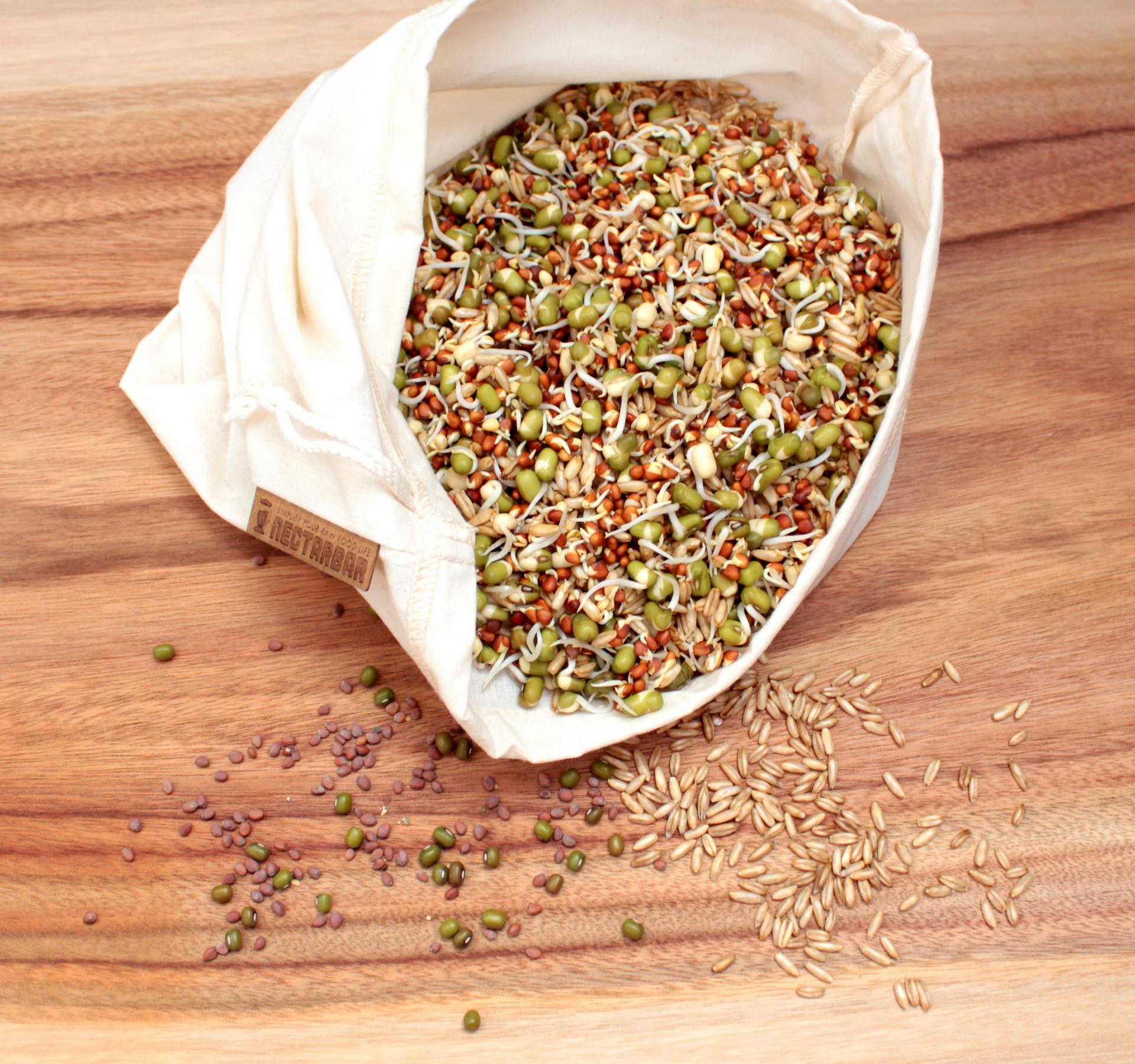 Sprouting Bag Nectarbar