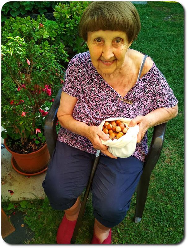 Nectarbar Famlilie - Haselnüsse sammeln Raw Food Filter Bag